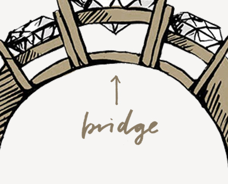 Your Guide to Ring Anatomy: Bridge