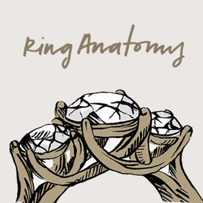 Your Guide to Ring Anatomy